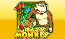 Правила игры в игровой автомат Вулкан — Crazy Monkey